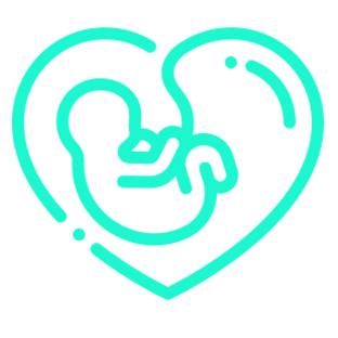 Services_0007_pregnancy